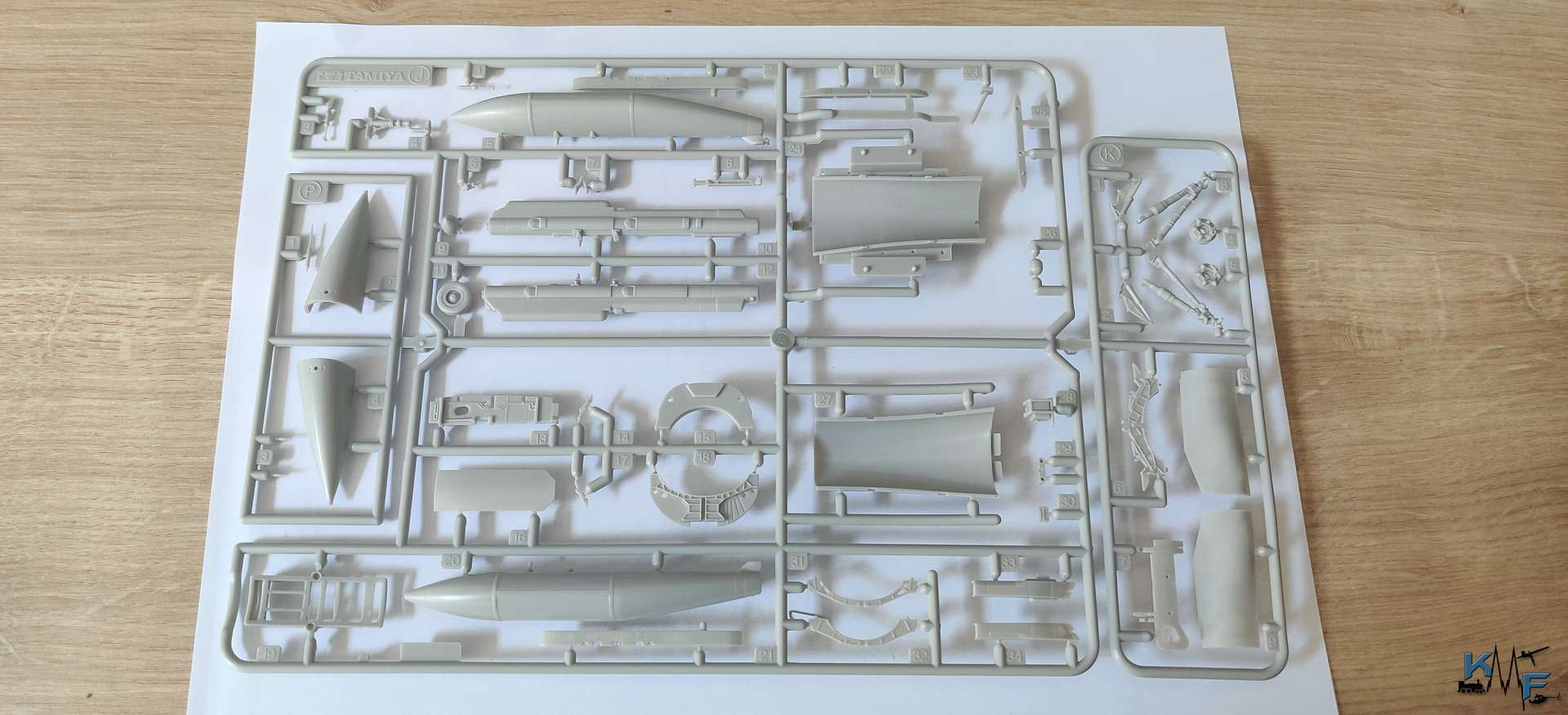 BV-TAM-F16C_18.jpg