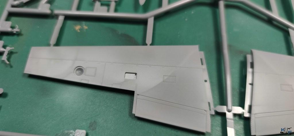 BV-TAM-P38F_17.jpg